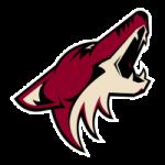 Phoenix Coyotes Statistics