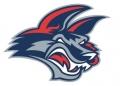 Elmira Jackels Logo