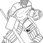 Top NHL Goalies 2012