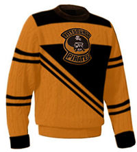 Pittsburgh Pirates Hockey Jersey